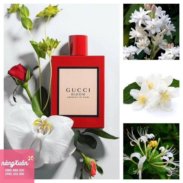 Review Gucci Bloom Ambrosia Di Fiori EDP chính hãng xách tay mua ở đâu giá bao nhiêu