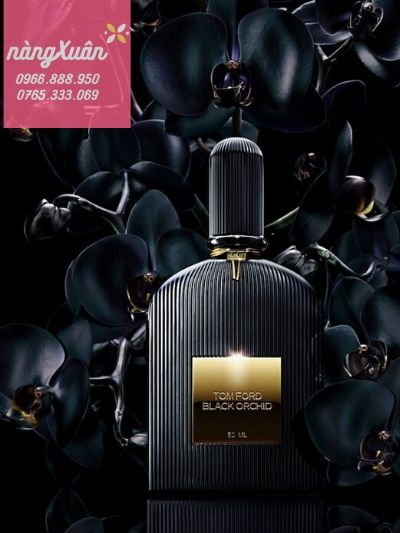 Black Orchid 100ml authentic có sẵn