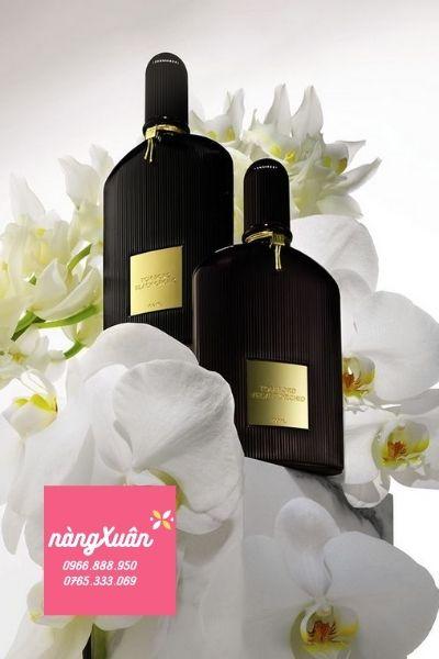 Nơi mua Nước hoa Tom Ford Black Orchid EDP 100ml chính hãng giá rẻ