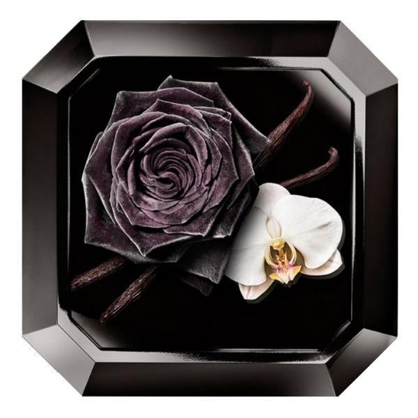 Sự kết hợp hoa hồng đen, hoa phong lan và hoắc hương tạo nên điều đặc biệt
