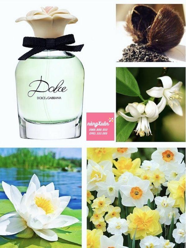 Mùi hương quyến rũ từ hoa súng và hoa đu đủ